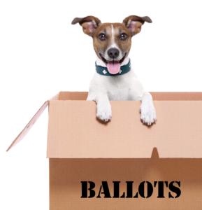 Professional Election Inspectors